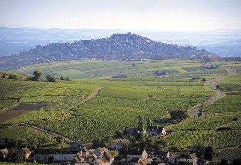Domaine Jean-Marc Crochet