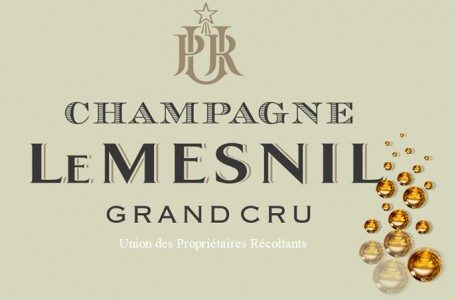 Champagne Le Mesnil Wines With Conviction